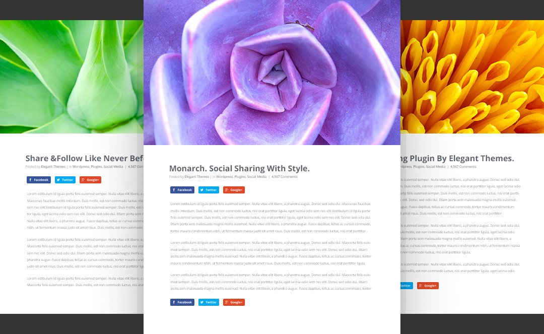 Ejemplos de opciones inline botones redes sociales - Monarch WordPress