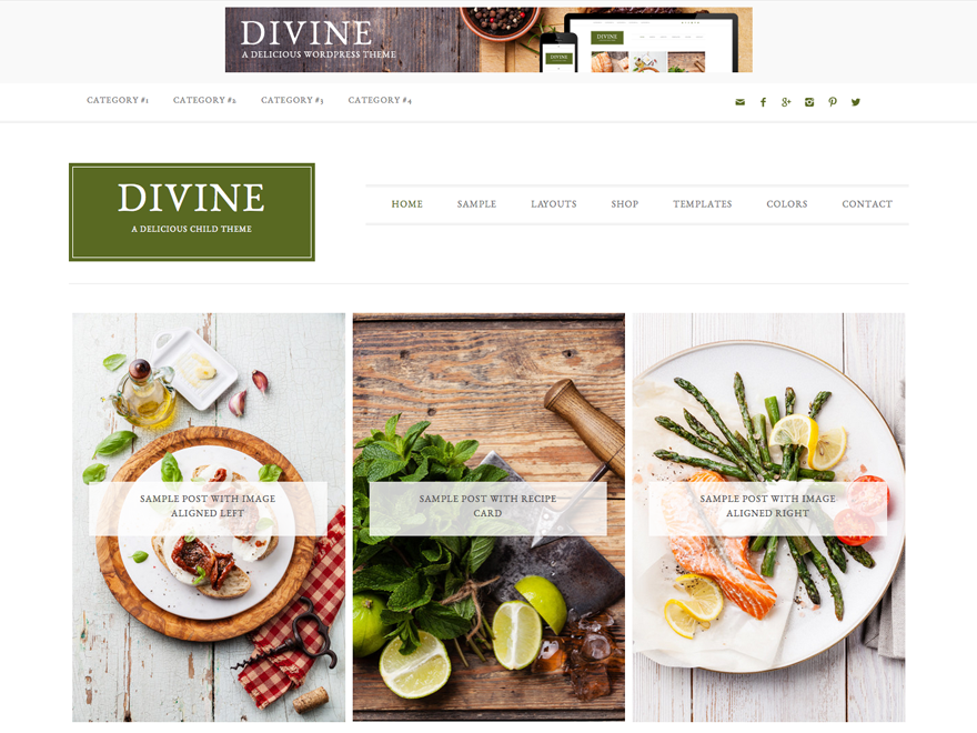 Divine Pro Theme 1.0.6 – Genesis Child Theme