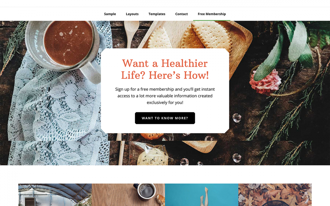 Wellness Pro Theme 1.1.4 – Genesis Child Theme