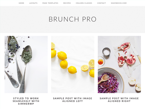 Brunch Pro Theme 2.2.2 – Genesis Child Theme